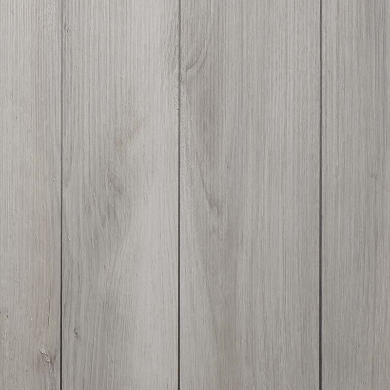 essenza legno pino bianco